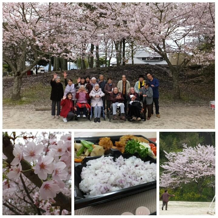 桜の見に♪(老人ホーム大宮司)