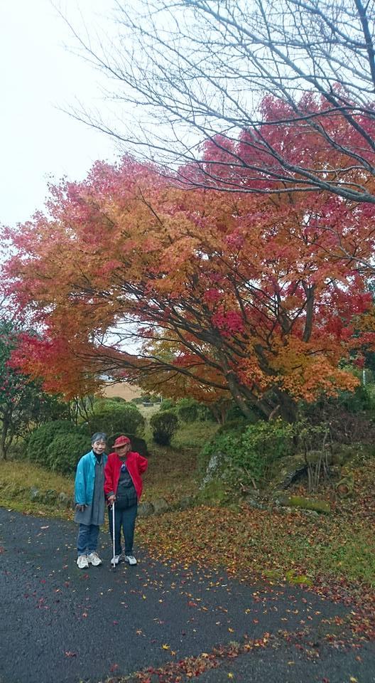 紅葉散歩(老人ホーム大宮司)2